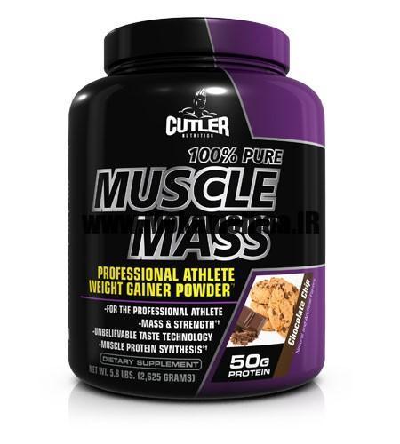 pure-muscle-mass_1