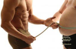 فیبر ها و رابطه ی آنها با لاغر شدن