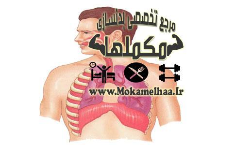 تنفس در ورزش و بدنسازی
