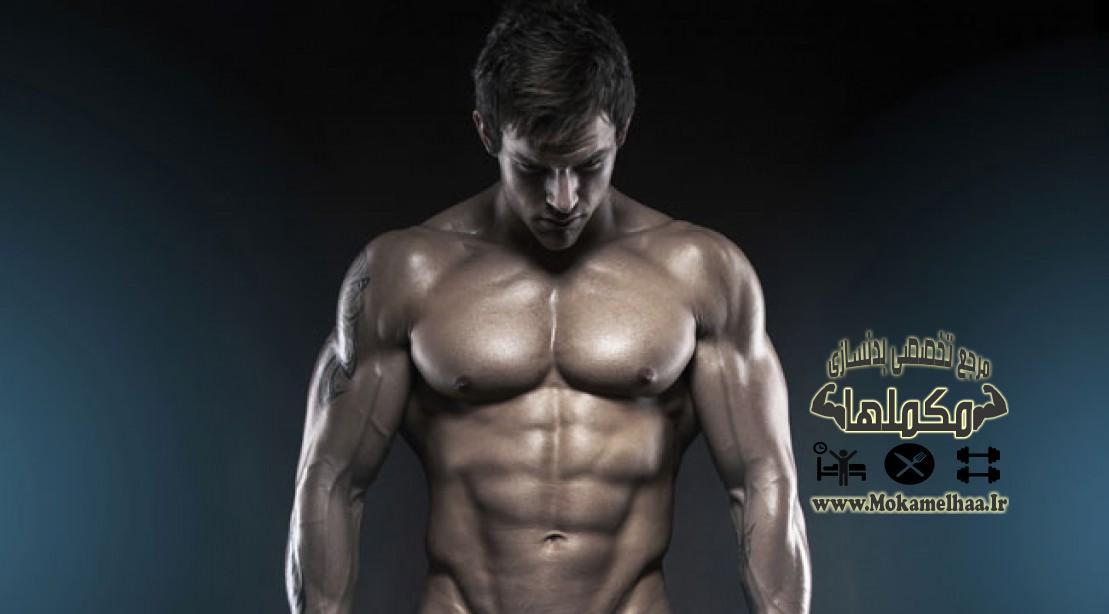 آیا تمرینات تا رسیدن به ناتوانی عضلات ضروری میباشد؟,تمرینات بیش از حد,بدنسازی,مکملهای بدنسازی,بدنسازی حرفه ای,بدنسازی زنان,مقالات بدنسازی