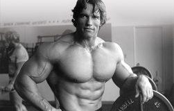 ۶ دلیل حیاتی موفقیت آرنولد از زبان خودش,آرنولد,زندگی نام آرنود,دلیل موفقییت آرنولد,آرنولد بیگرافی,بدنسازی پرورش اندام,پبدنسازی بانوان,بیگرافی بدنسازان