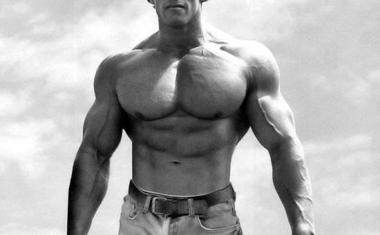 توصیههای تمرینی آرنولد برای هر عضله