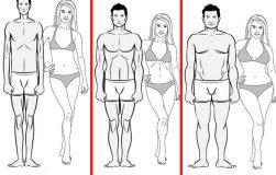 عکس انواع تیپهای بدنی و ویژگیهای آن