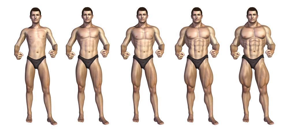 ۸ اصل اساسی برای ساختن حداکثر عضلات (بخش اول)