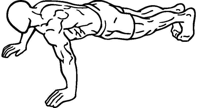 کاملترین و جامع ترین راهنمای بدن سازی بانوان (بخش اول) %d9%85%d9%82%d8%a7%d9%84%d8%a7%d8%aa-%d8%a2%d9%85%d9%88%d8%b2%d8%b4%db%8c woman