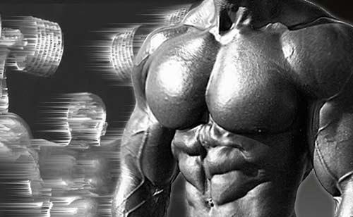 عکس بدن سازی ۱۰۱ (اصول بدن سازی)