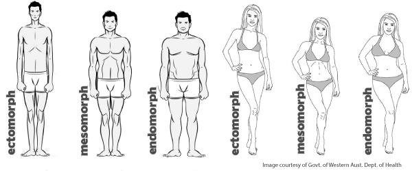 عکس کاملترین و جامع ترین راهنمای بدن سازی بانوان (بخش سوم و پایانی)