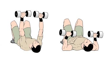 عکس ۳ برنامه کارامد افزایش حجم و قدرت پشت بازو ها