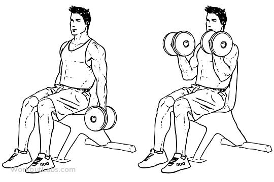 عکس تمرینات پر فشار سینه و جلو بازو با جو دانلی