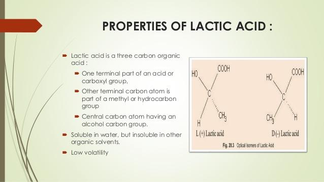 production of lactic acid and acidic acid 23 638
