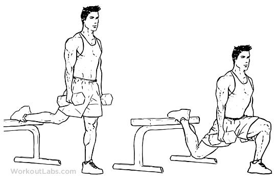 عکس چرا شما نیاز به انجام جلسات تمرینی بیشتری برای عضلات پا دارید (به همراه برنامه تمرینی)