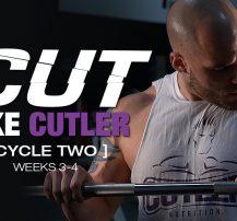 عکس برنامه تمرینی کارامد Cut Like Cutler Trainer (هفته ۳-۴)