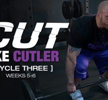 عکس برنامه تمرینی کارامد Cut Like Cutler Trainer (هفته ۵-۶)