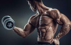 عکس برنامه سنگین و کارامد افزایش حجم جلو بازو
