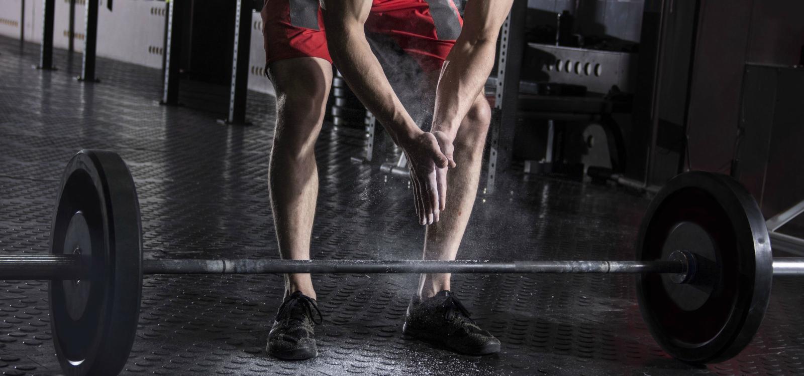 cut or bulk first bodybuilding
