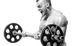 عکس اهمیت دم عضلانی در رشد عضلات چه میزان میباشد