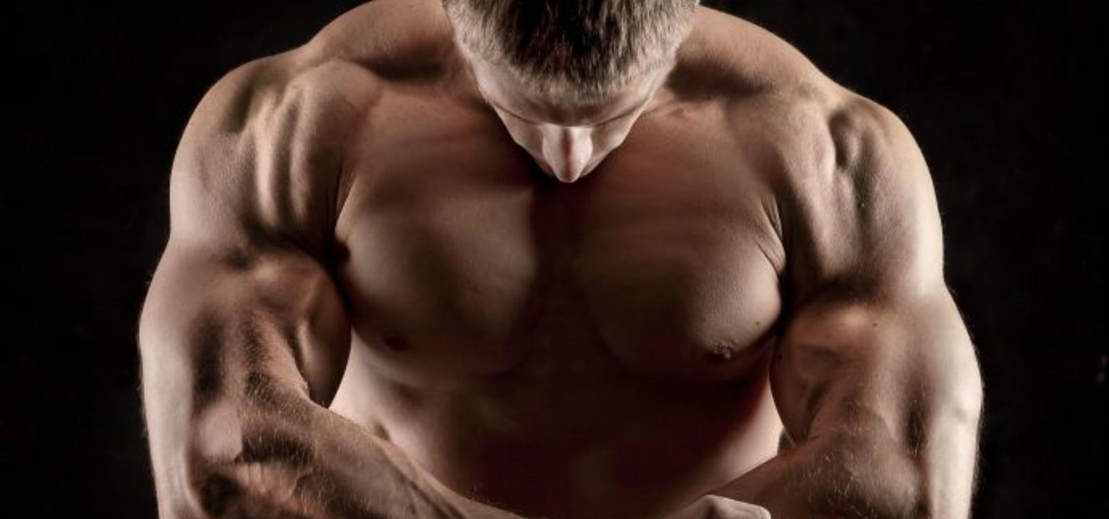 should i cut or bulk bodybuilding