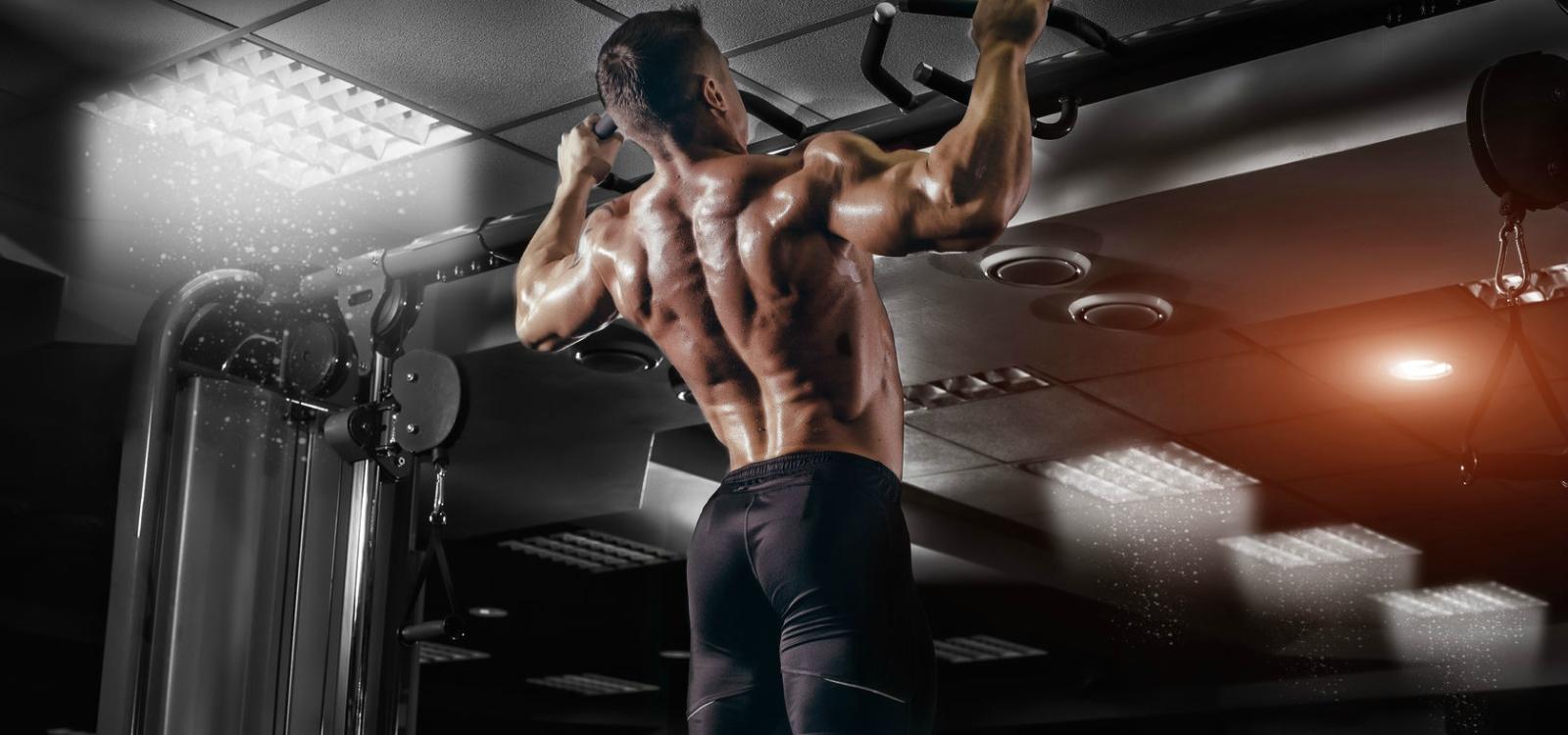 برنامه کامل عضلات پشت برای افزایش حجم، توان و قدرت %d9%85%d9%82%d8%a7%d9%84%d8%a7%d8%aa-%d8%a2%d9%85%d9%88%d8%b2%d8%b4%db%8c %d8%a8%d8%b1%d9%86%d8%a7%d9%85%d9%87-%d8%aa%d9%85%d8%b1%db%8c%d9%86%db%8c