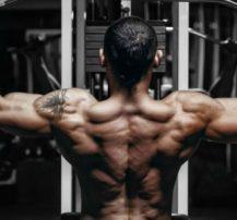 عکس برنامه کامل عضلات پشت برای افزایش حجم، توان و قدرت