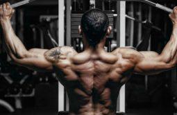 برنامه کامل عضلات پشت برای افزایش حجم، توان و قدرت