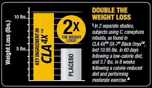 عکس بررسی چربی سوز قوی CLA  4X SX-7 Black Onyx از ماسل تک