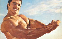 عکس ۵ سوپرست الهام گرفته از تمرینات سینه و پشت آرنولد شوارتزنگر