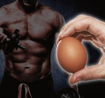 عکس آیا تخم مرغ کامل برای عضله سازی بهتر از سفیده آن است؟