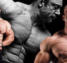 عکس سیستم تمرینی کارامد و سنگین (Y3T) برای عضله سازی خالص