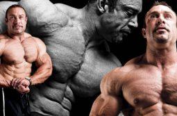 سیستم تمرینی کارامد و سنگین (Y3T) برای عضله سازی خالص
