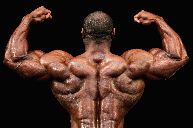 عکس راهنمای همه جانبه تمرینات به منظور افزایش حجم و قدرتی عضلانی
