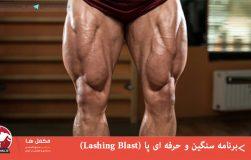 برنامه سنگین و حرفه ای پا (Lashing Blast)