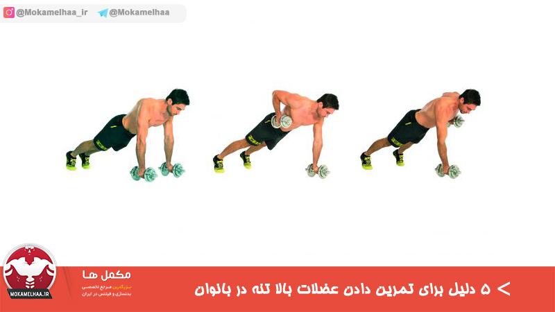 ۵ دلیل برای تمرین دادن عضلات بالا تنه در بانوان