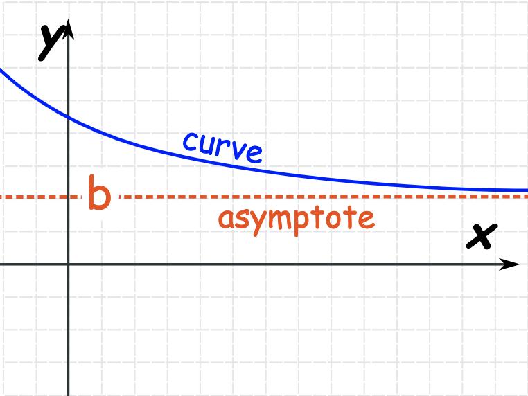 asymptote muscle gain