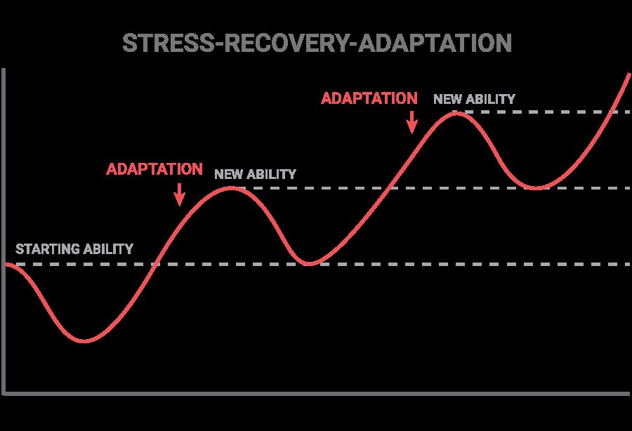 stress recovery adaption