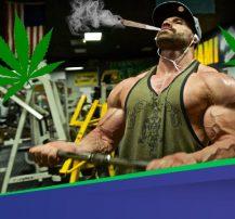 ماریجوانا و بدنسازی