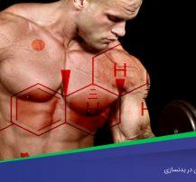 اهمیت ویژه استروژن در بدنسازی