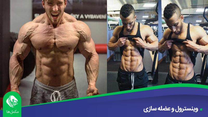 وینسترول و عضله سازی