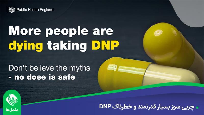 DNP چیست