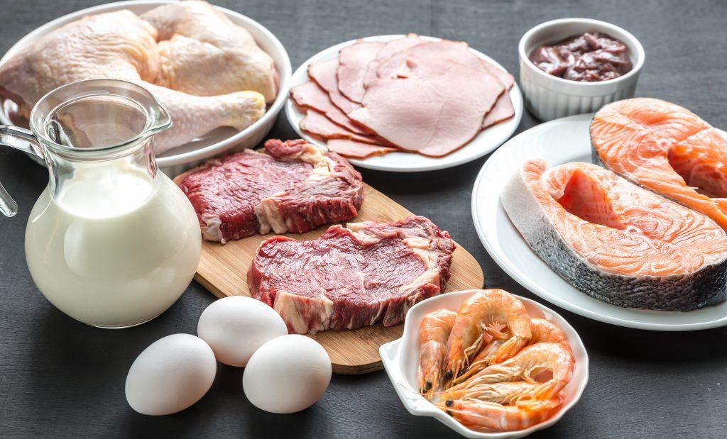 Protein Diabetes Diet Plan for Bodybuilding
