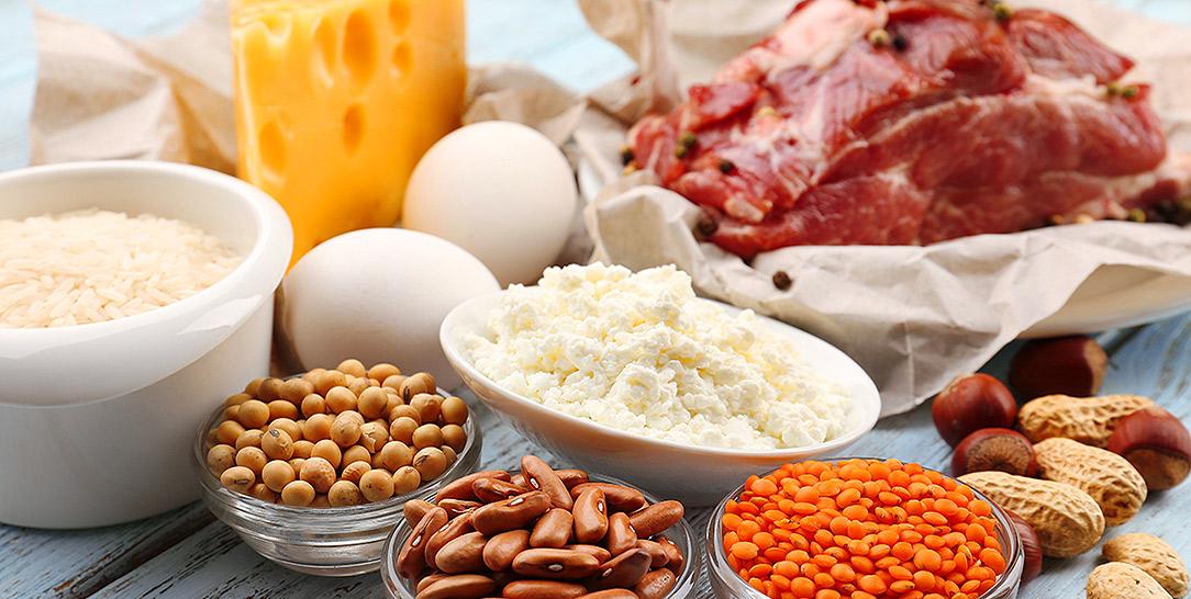 quali sono proteine migliori