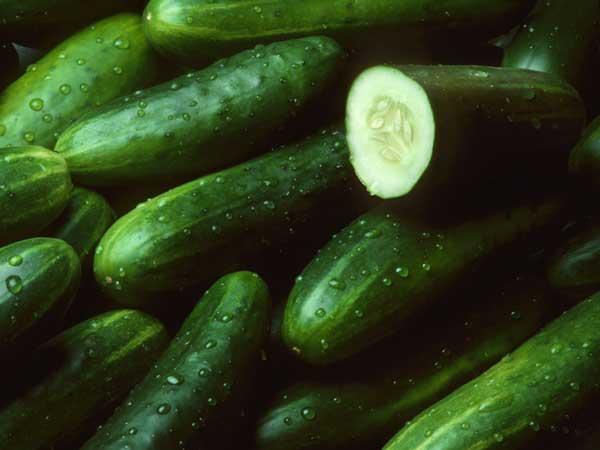 خوراکی های با طبع سرد