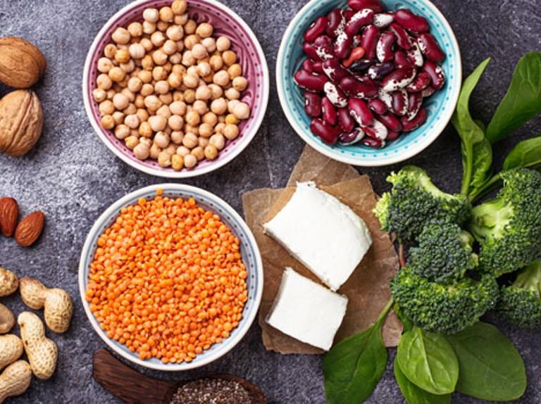 منبع پروتئین گیاهی