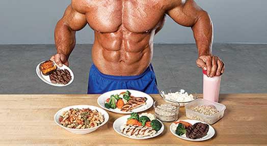آنابولیسم و کاتابولیسم پروتئین