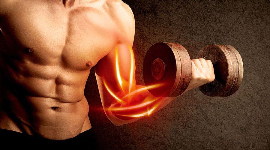 زمان عضله سازی