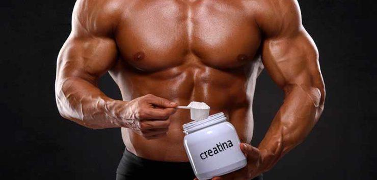 creatina-740x355