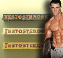Increase-Testosterone-BODYBUILDING-DIET-3