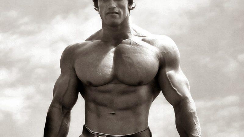 Arnold_Schwarzenegger_wallpaper_HD_0001