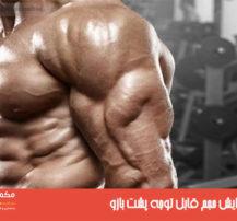 ۴ راز افزایش حجم قابل توجه پشت بازو
