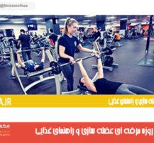 برنامه ۶ روزه حرفه ای عضله سازی و راهنمای غذایی