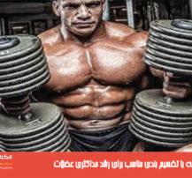 بهترین برنامه با تقسیم بندی مناسب برای رشد حداکثری عضلات